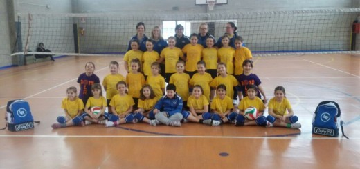 Microvolley 2006-2007